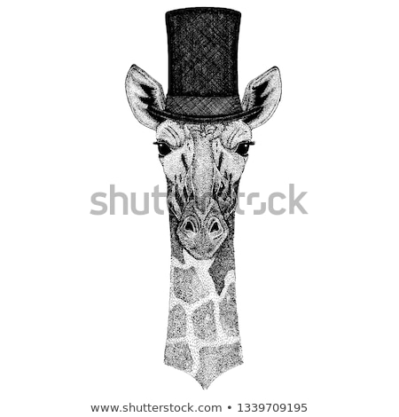 Giraffe illustratie bril dier cartoon Stockfoto © brux