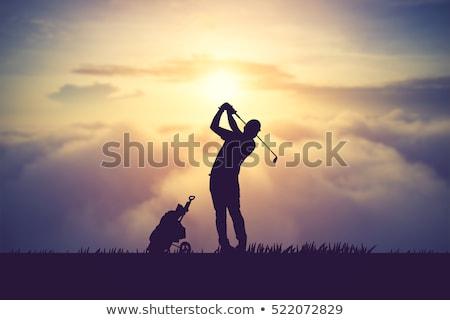 Uomo golfista silhouette tramonto illustrazione verde Foto d'archivio © adrenalina