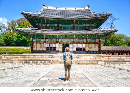 Girl from South Korea standing Stock photo © bluering