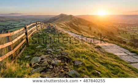 Lata krajobraz góry zielone ścieżka łące Zdjęcia stock © Kotenko