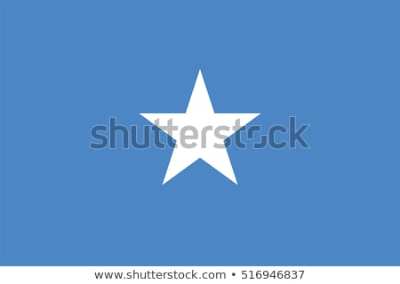 somalia flag vector illustration stock photo © butenkow