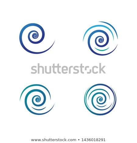 water vortex spiral circle icon vector Stock photo © blaskorizov
