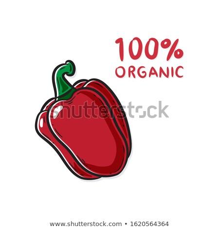Pepper Fresh Homegrown Veggie Vector Illustration Stock photo © robuart