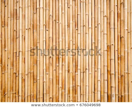 old brown tone bamboo plank fence texture for background Stock photo © galitskaya