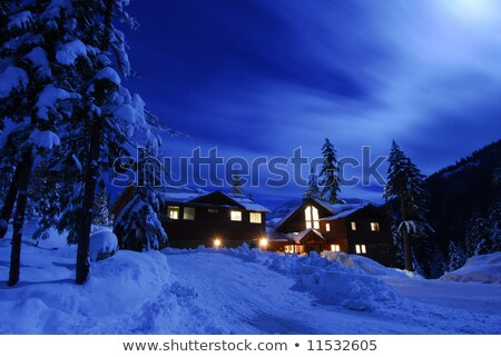 Winter moon with cabins Stock photo © bluering