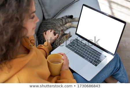 Mulher café assistindo webinar laptop negócio Foto stock © dolgachov