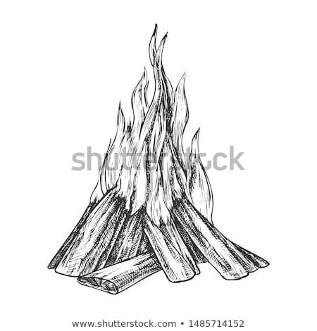 Hagyományos égő fából készült bot monokróm vektor Stock fotó © pikepicture