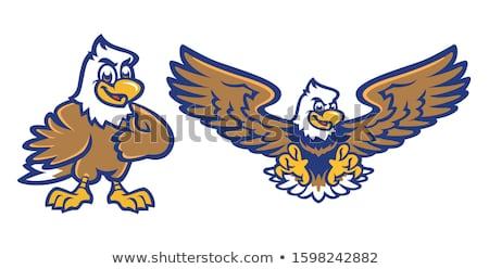 Wild kaal adelaar vogel geïsoleerd dier Stockfoto © cienpies