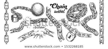 Vasaló lánc monokróm vektor különálló klasszikus Stock fotó © pikepicture