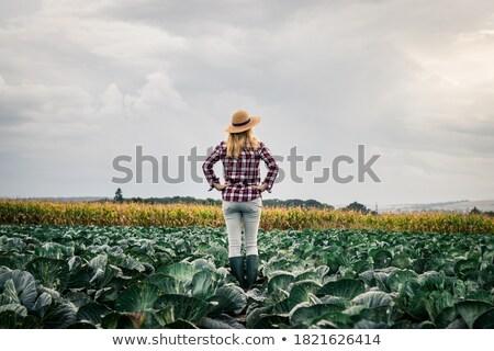 女性 立って 誇りに思う ファーム 食品 ストックフォト © Kzenon