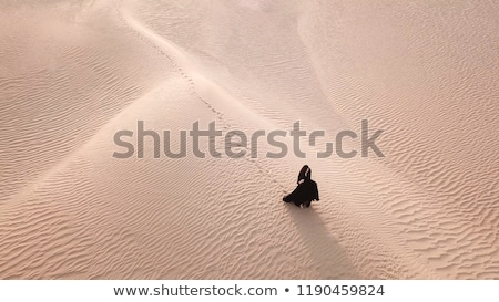 Woman in a desert landscape Stock photo © lovleah