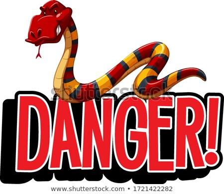 Chrzcielnica projektu słowo niebezpieczeństwo węża Zdjęcia stock © bluering
