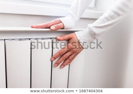Domu urządzenie ciepła pokoje ciepły Zdjęcia stock © robuart
