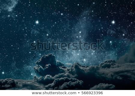 満月 夜空 星 ビッグ 森林 ツリー ストックフォト © vapi