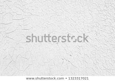 長方形の グランジ 表面 ひびの入った 塗料 ストックフォト © Melvin07