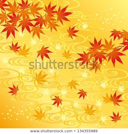 Nehir sarı turuncu sonbahar yaprakları orman Stok fotoğraf © Melvin07