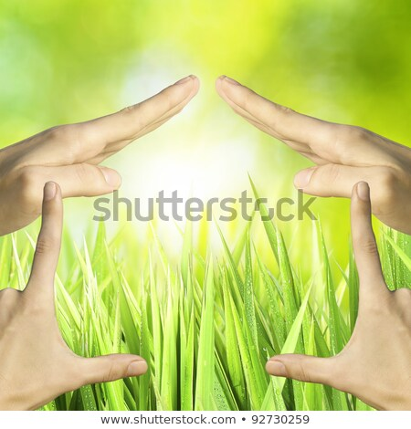 Hands showing symbolic house. With abstract sunny bokeh. Square  Stock photo © moses