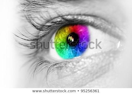 absztrakt · kék · szem · közelkép · lövés · nő - stock fotó © redpixel