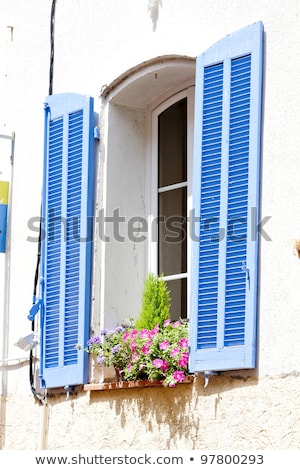 Detail Haus Frankreich Blume Gebäude Dorf Stock foto © phbcz
