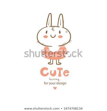 Alegre nina conejo anunciante aislado blanco Foto stock © pzaxe