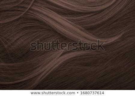 Donna lungo capelli castani bellezza ritratto Foto d'archivio © wavebreak_media