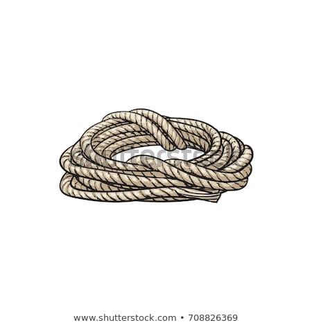 веревку · изолированный · белый · фон · помочь - Сток-фото © pterwort
