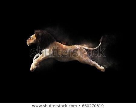 Stock fotó: Oroszlán · fut · 3d · render · sivatag · természet · macska