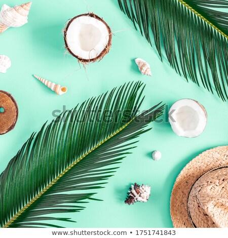 Stockfoto: Tropische · vakantie · vierkante · sexy · mode · landschap