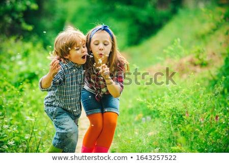 Boy Blowing Dandelions Stock photo © luminastock