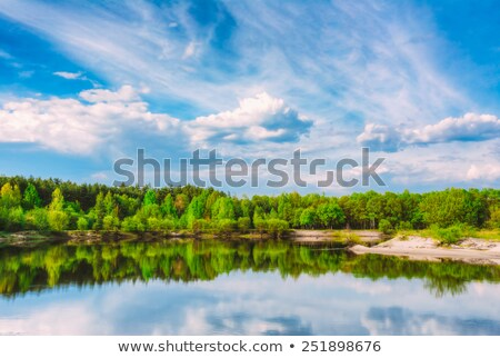 River in the forest in summer under a blue sky stock photo © azjoma