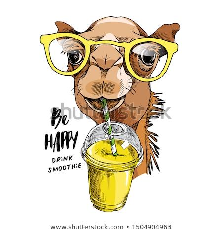 Deve karikatür mutlu dizayn çöl çocuk Stok fotoğraf © Genestro