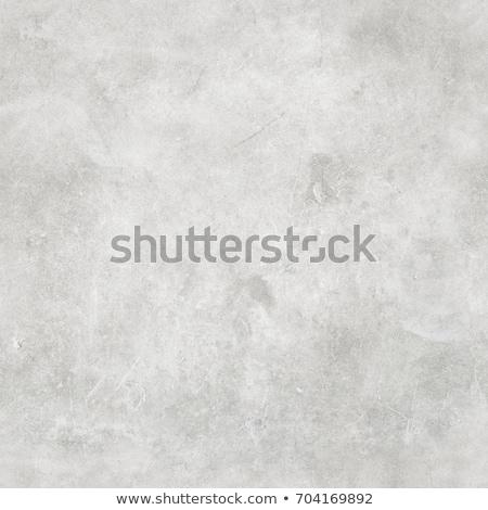 Old Concrete Wall. Seamless Tileable Texture. Stock photo © tashatuvango