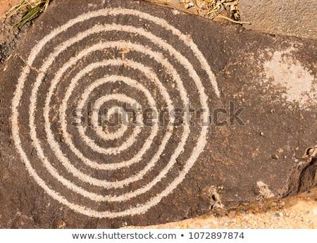 Oude rock spiraal hand dieren spinnen Stockfoto © pixelsnap