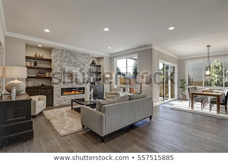 Modern stone fireplace in the living room Stock photo © pxhidalgo