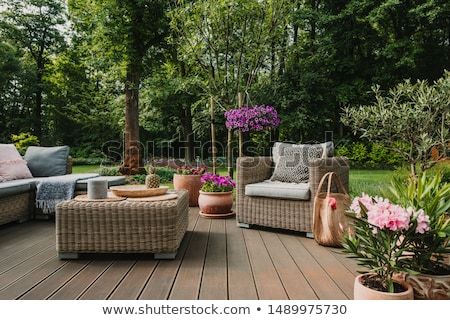 luxe · patio · maison · herbe · bois - photo stock © hanusst