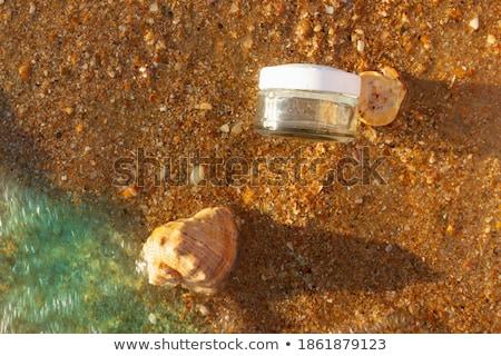 Conchas areia espaço texto praia Foto stock © alekleks