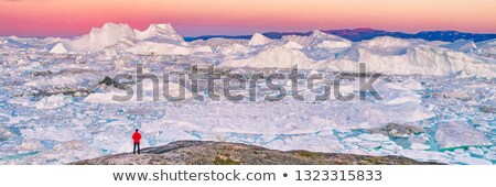 Greenland panorama stock photo © mady70