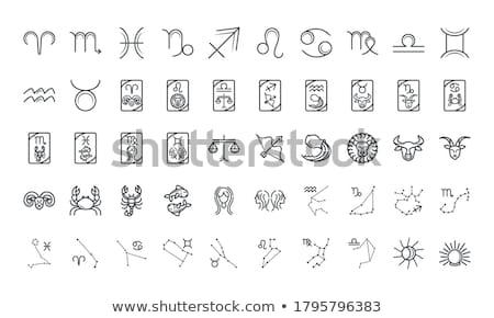 Zodíaco ícones 3D azul conjunto projeto Foto stock © silense