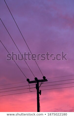 power pole with blue purple sky background stock photo © meinzahn