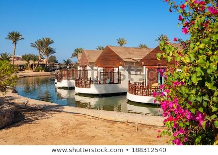 Mısır başvurmak su yaz mavi otel Stok fotoğraf © Mikko