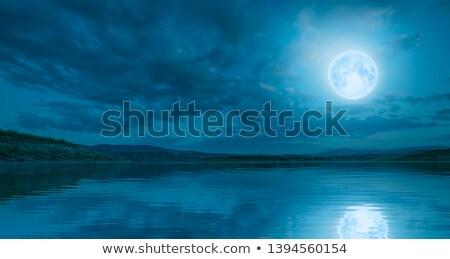 Marzenia światło księżyca młoda dziewczyna posiedzenia drzewo lasu Zdjęcia stock © nizhava1956