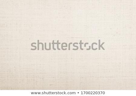 pamut · vászon · textúra · művész - stock fotó © homydesign