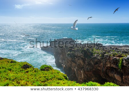 Beach by the Atlantic Ocean in Cascais Stock photo © rognar