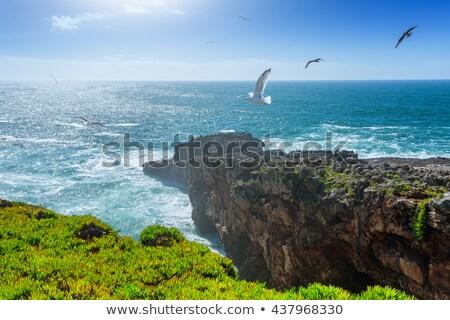 Beach by the Atlantic Ocean in Cascais Stock photo © rognar