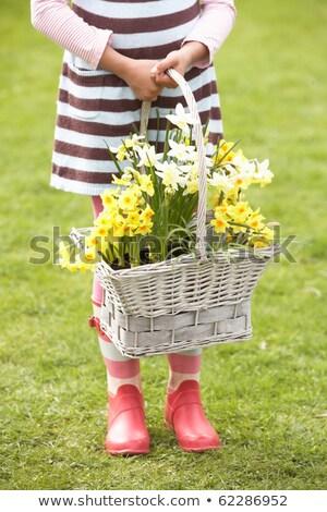 Détail fille panier jonquilles jardin Photo stock © monkey_business