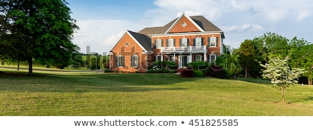 Spacious front yard landscape with lawn and trees Stock photo © iriana88w