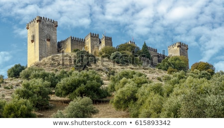 Рио · Испания · замок · весны · стены · деревья - Сток-фото © neirfy