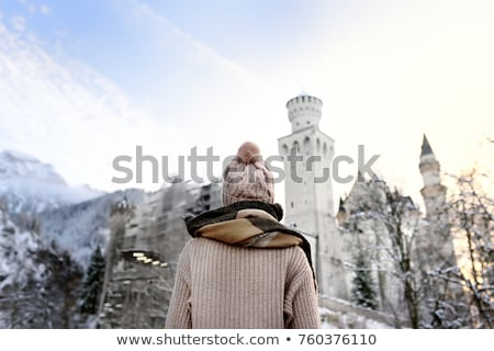 hohenschwangau castle at wintertime alps germany stock photo © fisfra