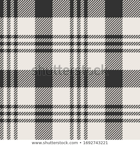 Black & white checked material background Stock photo © lucielang
