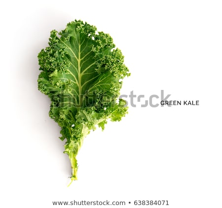 organic kale Stock photo © godfer